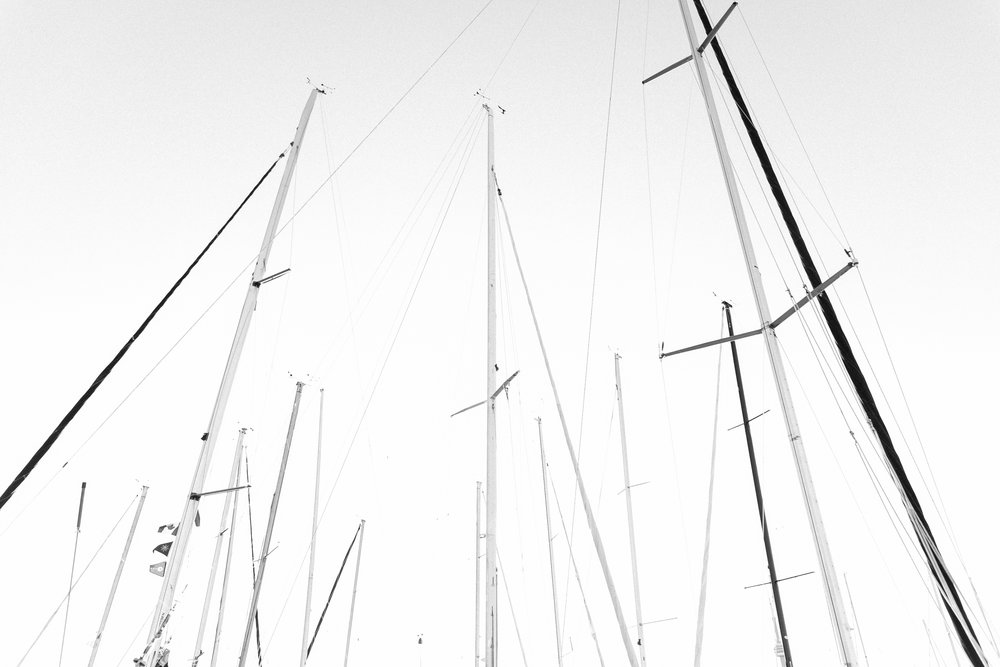 Boat sails at the Royal Canadian Yacht Club