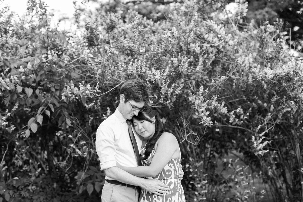Summer engagement photos at Niagara Botanical Gardens