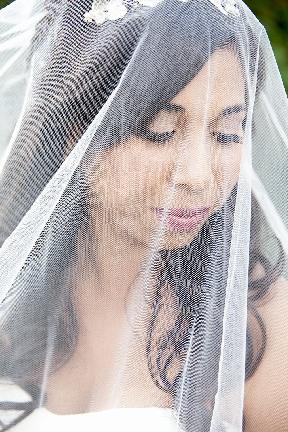 Bride wearing veil at Niagara wedding