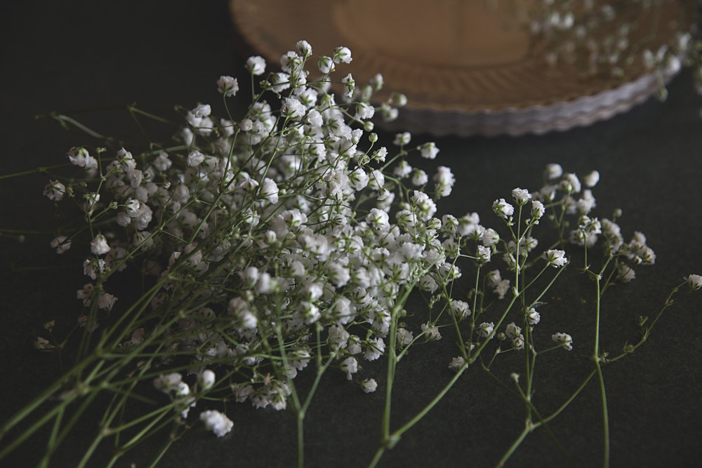 Baby's breath from wedding bouquet