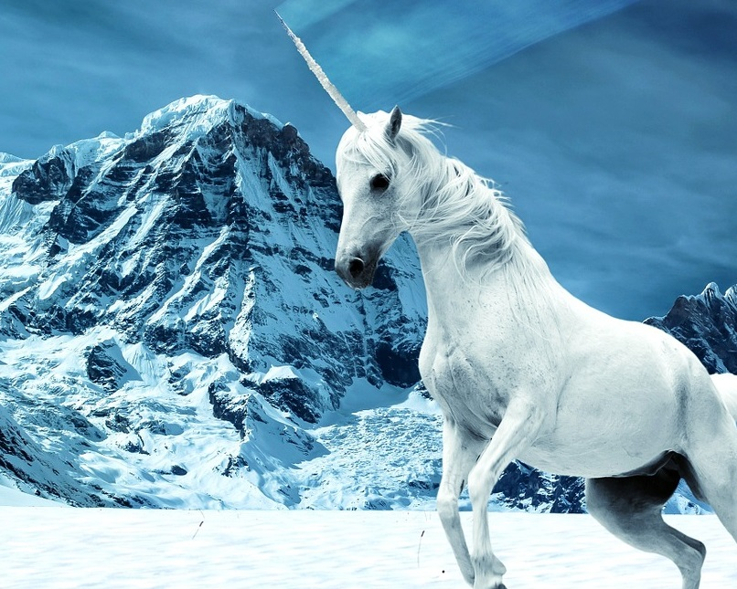 unicorn-1615680_1280.jpg