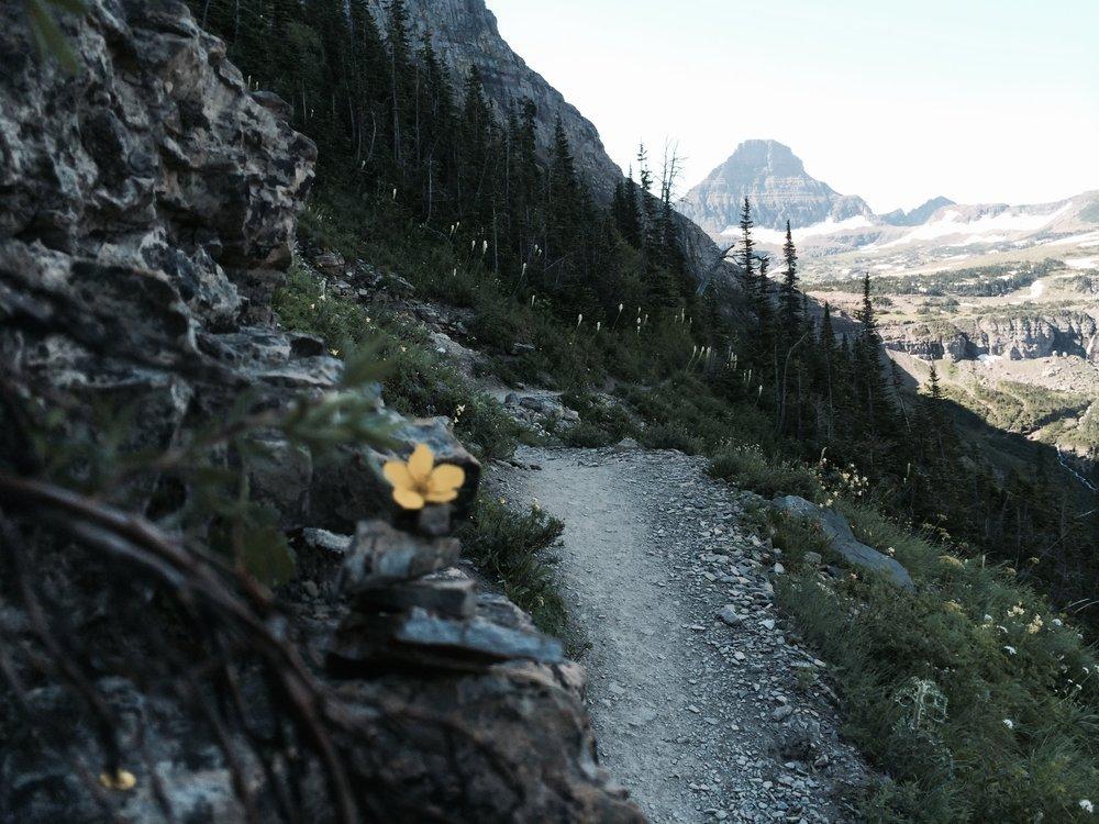 Glacier National Park // 2013