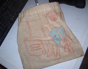 Champion Clothes Pin Bag