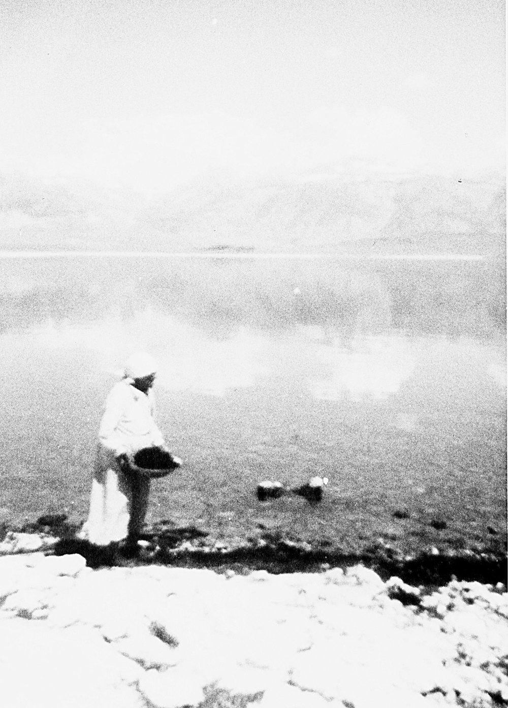 Nellie Charlie, Mono Lake Paiute, collecting alkali fly pupae