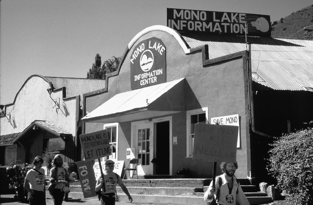"""Save Mono Lake"" Bike-athon and Bucket Walks were annual events during the Mono Lake Committee's successful 16 year campaign"