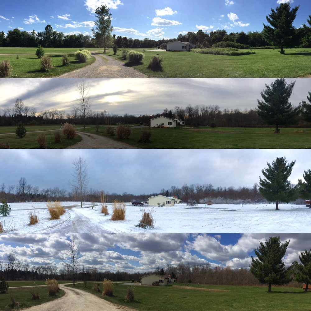 A view of all 4 seasons from the front door of the studio.