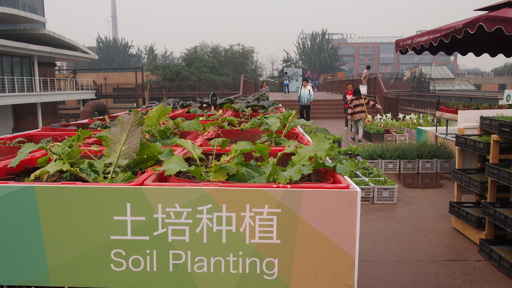 Urban Farming Showcase