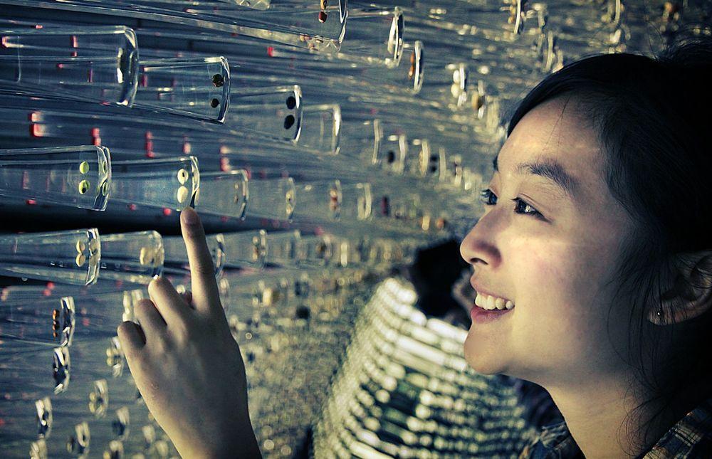 ShanghaiExpo_Seeds.jpg