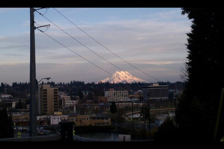 Mt. Rainier from Olympia.