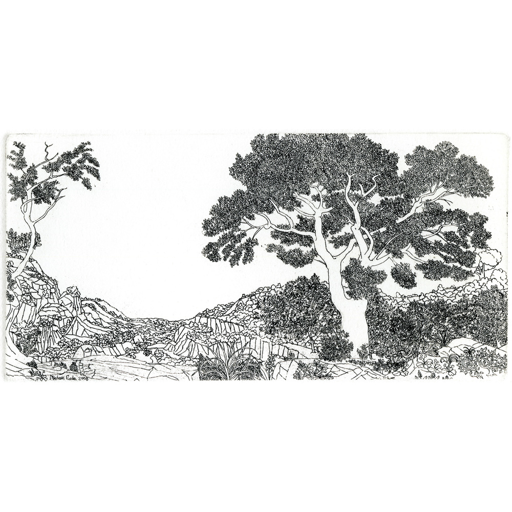 Landscape Study No.2 风景小稿 2,2014 Line etching printed on warm white Hahnemühle paper 哈内姆勒纸上铜版画 14 x 18 in. (35.6 x 45.7 cm) Edition 1 of 10