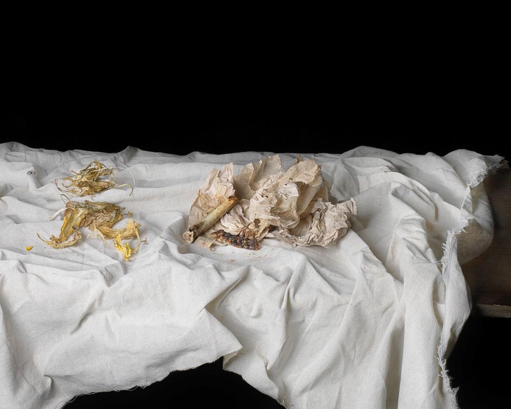 Bones on Paper 纸上的骨头, 2013,archival pigment print on fine art paper 收藏级艺术微喷,24 x 30 in. (61 x 76 cm) edition of 12 + 2 AP