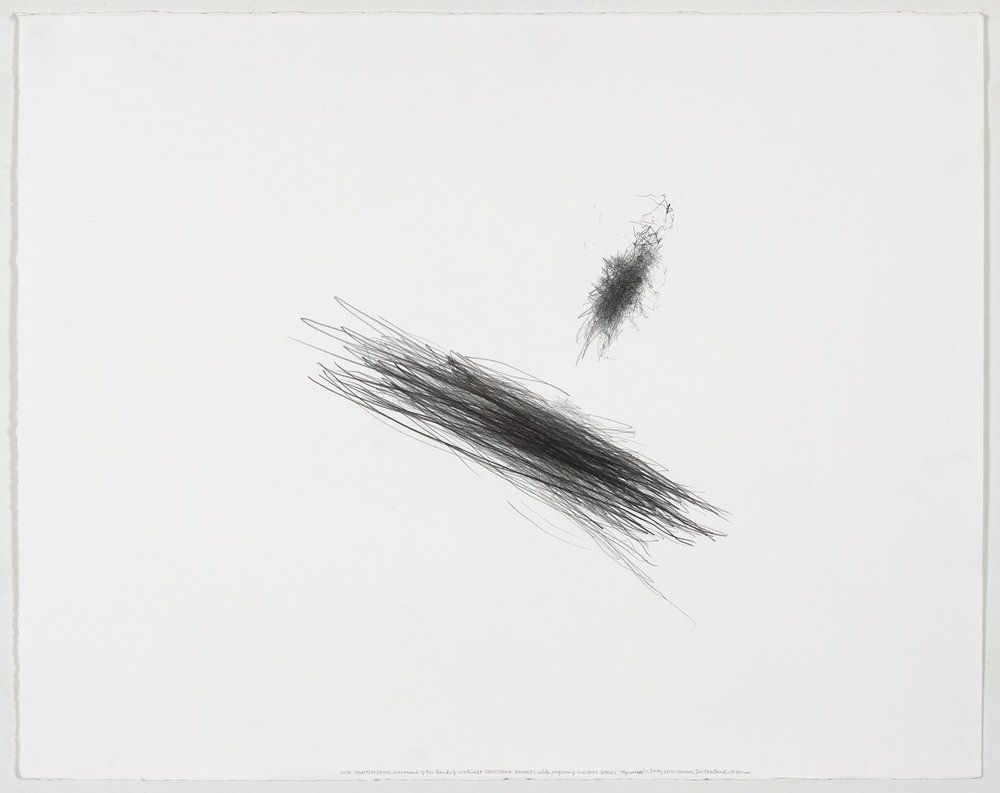 "LIVE TRANSMISSION: movement of the left hand of CELINE GAY DE COMBES while performing LUCIANO BERIO'S ""Sequenza"" for harp / Camerata Geneva / Centre d'Art Contemporain / Geneva, Switzerland / 5 May 2014, 2014, Graphite on paper, 23 × 29 in. (58.25 x 73.25 cm) ©Morgan O'Hara, courtesy of Fou Gallery  场境转换:席琳·盖·库姆斯演出卢西恩·贝利奥《序列曲》竖琴部分左手运动轨迹/日内瓦室内乐团/当代艺术中心/瑞士日内瓦/2014年5月5日,2014,纸上炭笔,23 × 29 in. (58.25 x 73.25 cm) ©摩根•奥哈拉,致谢否画廊"