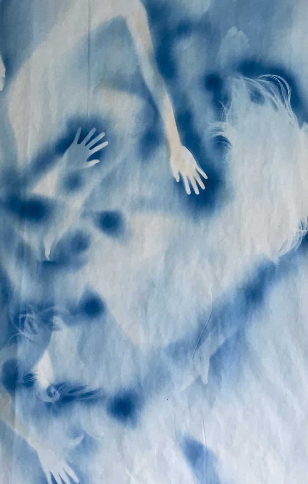 Han Qin,  Ethereal Evolution 1 , 2018. Cyanotype on paper, 82 x 47 inch ©Han Qin, courtesy Fou Gallery