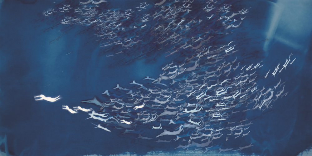 Han Qin,  The Age of Migration 1 , 2018. Cyanotype, watercolor, inkjet print on silk, 28 x 56 inch ©Han Qin, courtesy Fou Gallery  韩沁,迁徙时代 1,2018. 蓝晒,水彩,丝绸喷绘,71.2 x 144.2 cm © 韩沁,致谢否画廊