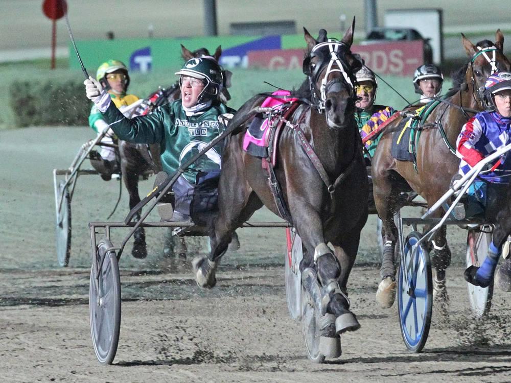 Speeding Spur - Great Southern Star winner 2016