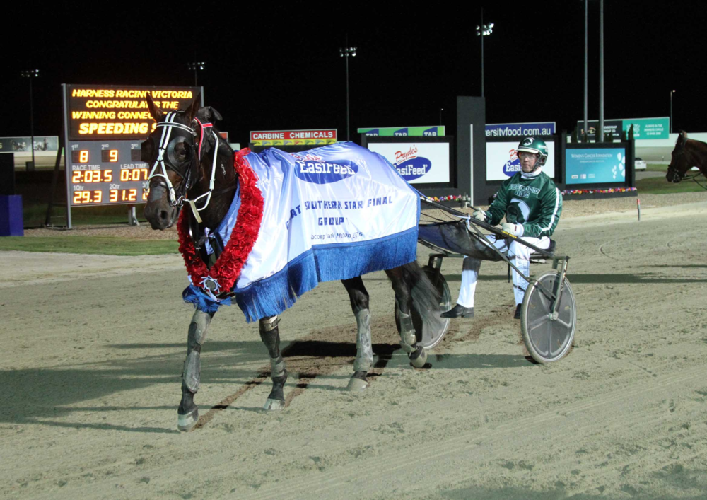 SpeEDING SPUR - Winner of the 2016 PRYDES EASI FEED GREAT SOUTHERN STAR