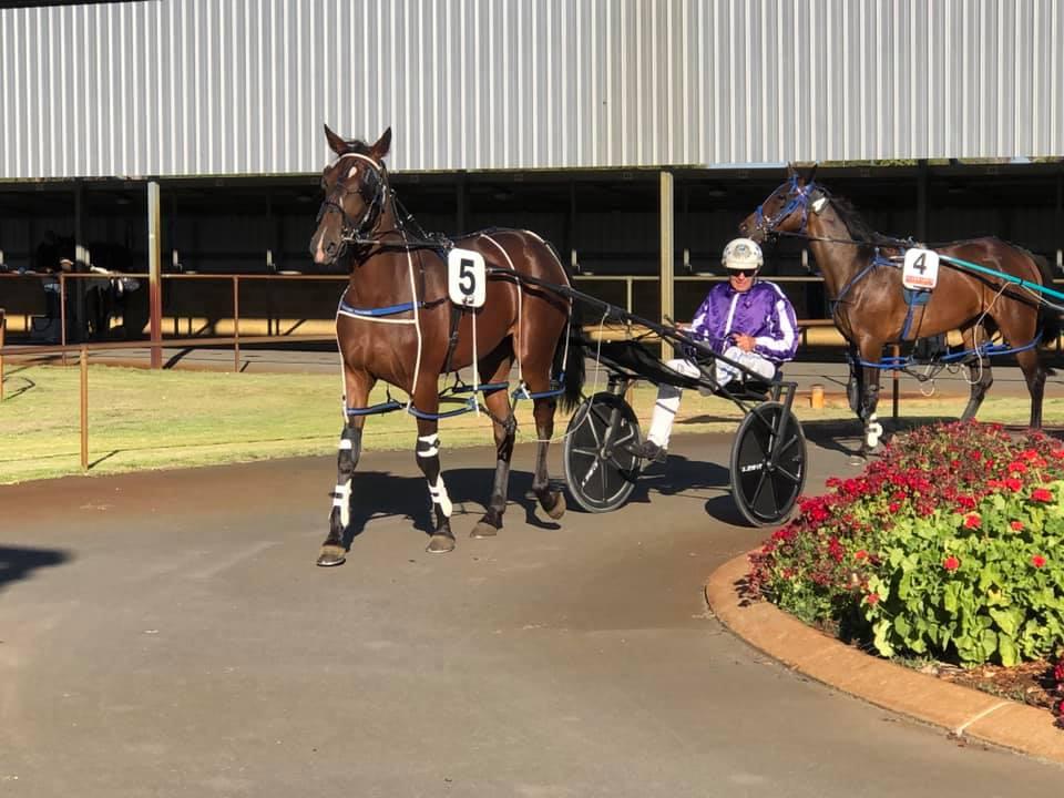 SWEET LOU'S FIRST AUSTRALIAN WINNER - DOUBLE EXPRESSO