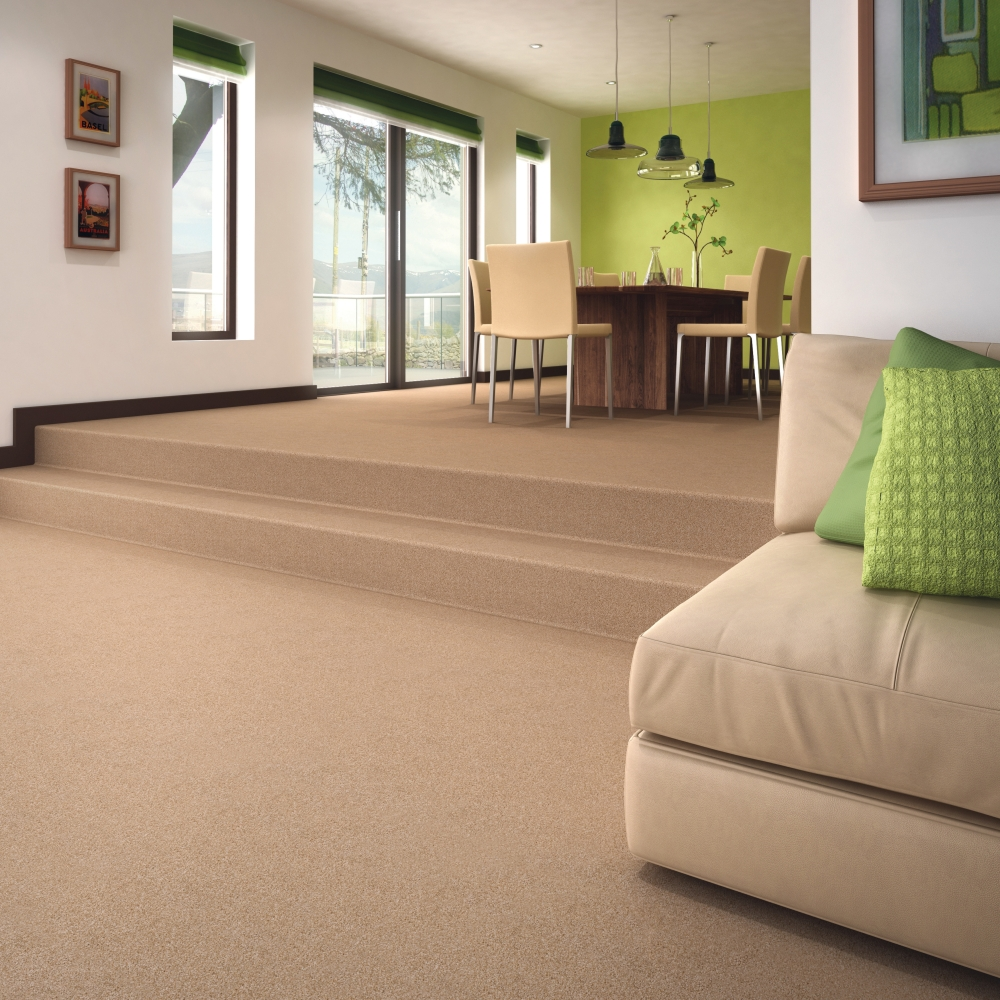 Living Room Carpets Carpet Cleaning Axiom Floor Care
