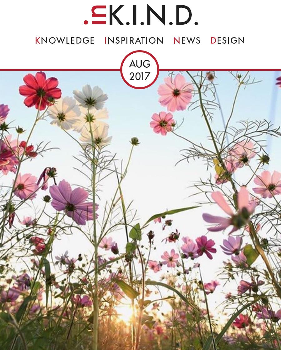 TP_Header de Fiddes Newsletter August.jpg