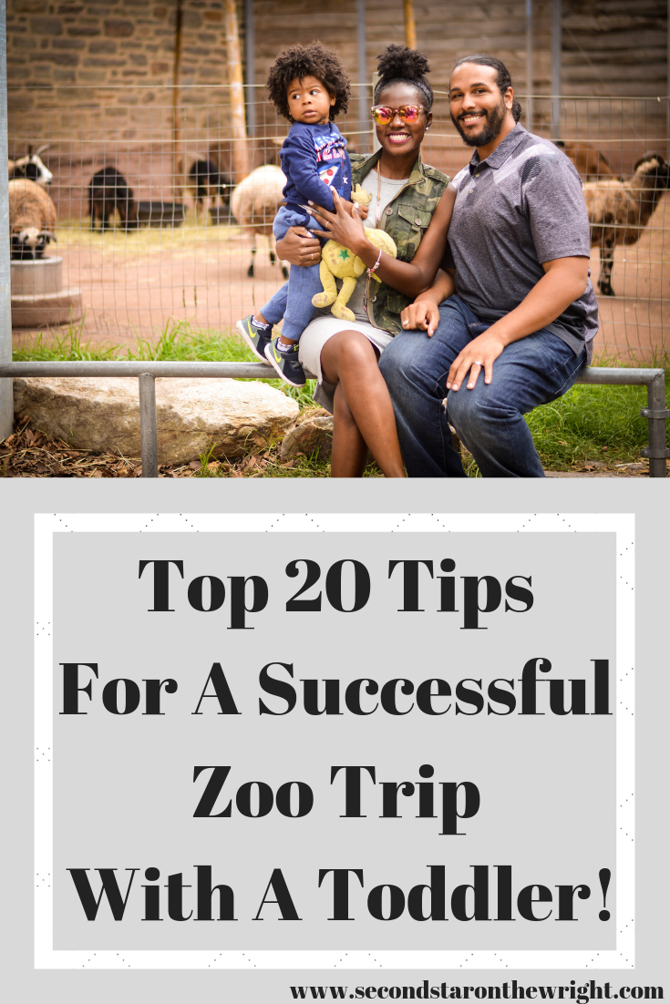Top 20 Tips For A Successful Zoo Trip With A Toddler!.png