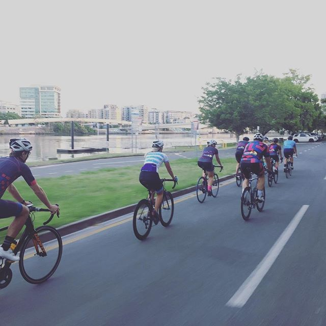 BTC out on the bikes this morning for a loop around the river. #brisbanetriclub #wymtm #triathlon #cycling