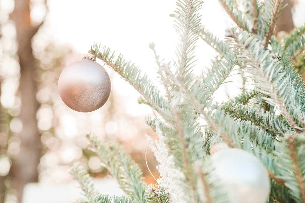 Christmas Mini Blog_2209.jpg