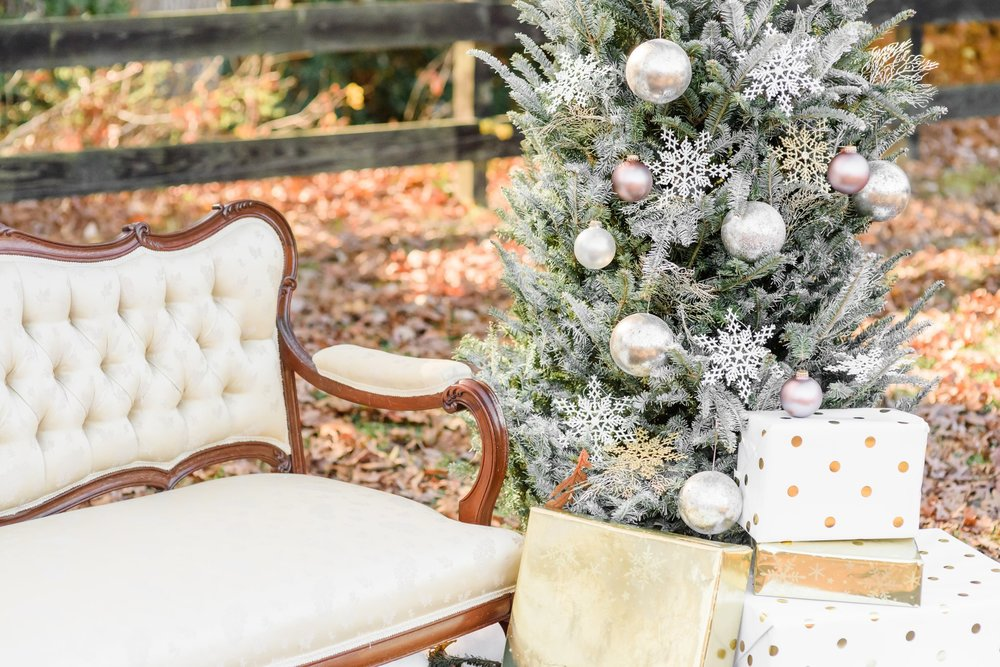 Christmas Mini Blog_2210.jpg