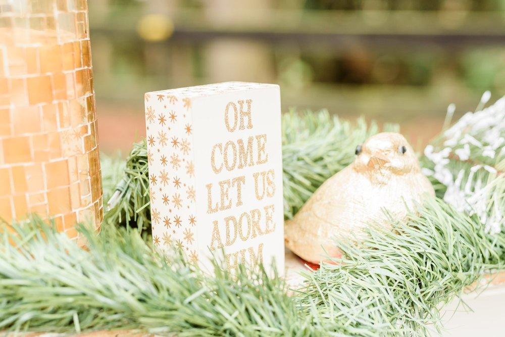 Christmas Mini Blog_2213.jpg