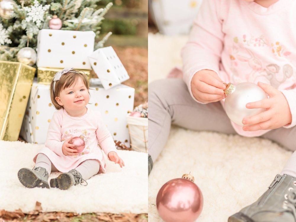 Christmas Mini Blog_2215.jpg