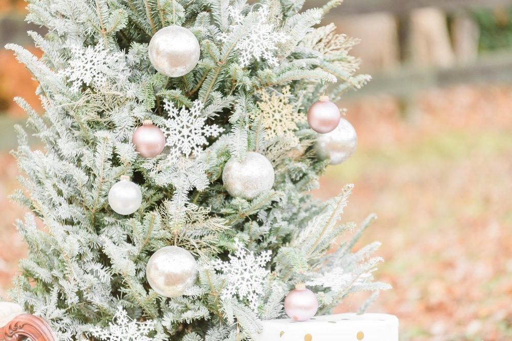 Christmas Mini Blog_2232.jpg
