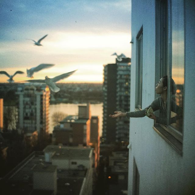 Feeding birds from balcony is illegal in some cities, watch out.  #hasselnuts #badasscameras  #hasselblad #6megapixels #vintagephoto #oldschoolpic