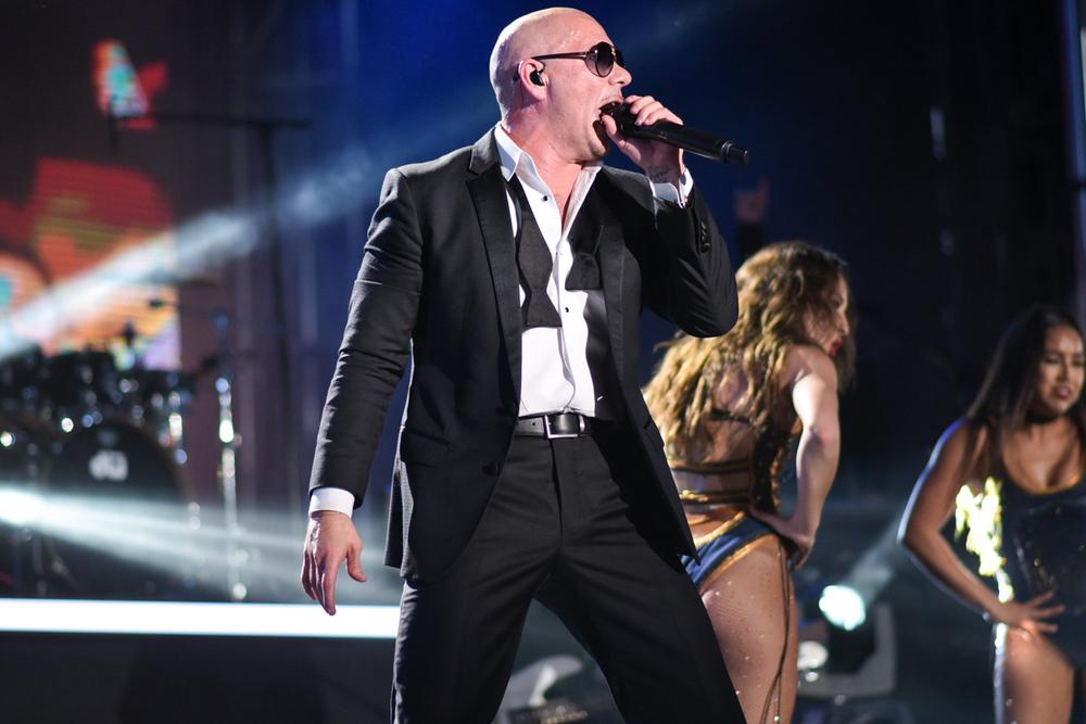 1-Pitbull-DSC_9993.jpg
