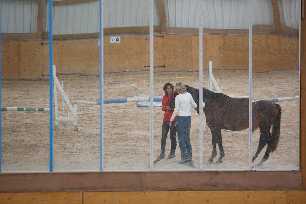 chevalcoaching.jpg
