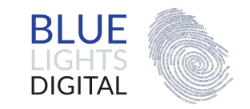 BlueLightsDigital_logo