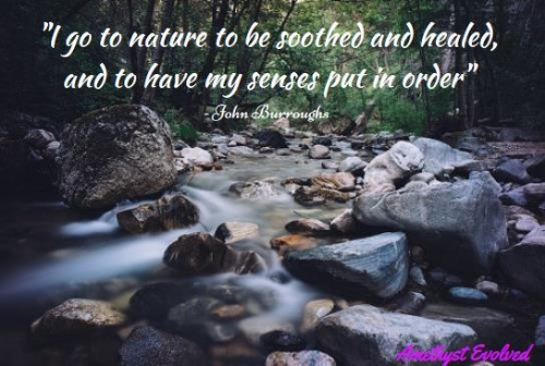 Connect with Nature Quote