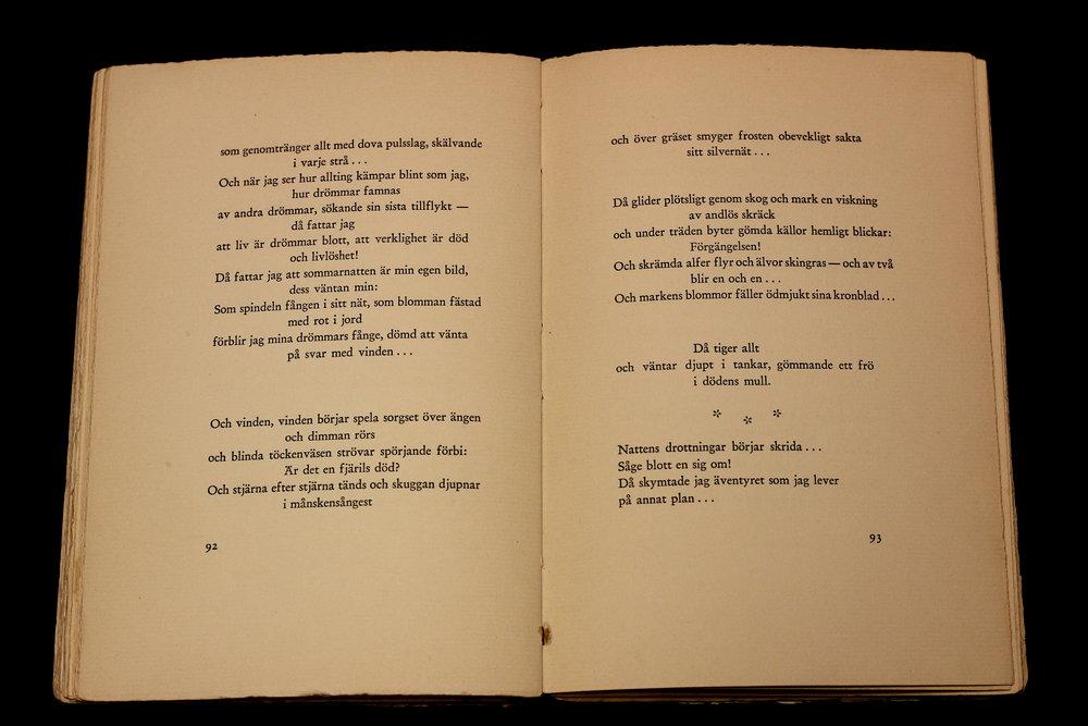 bild7b.JPG