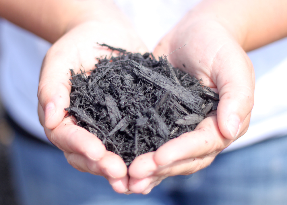 Dyed-Black-Natural-Mulch.jpg