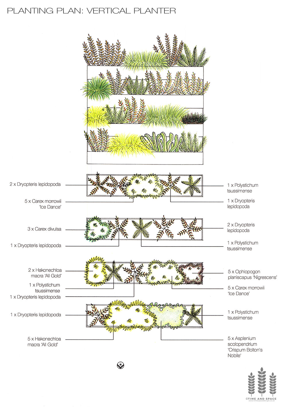 Vertical planter planting plan and elevation.jpg