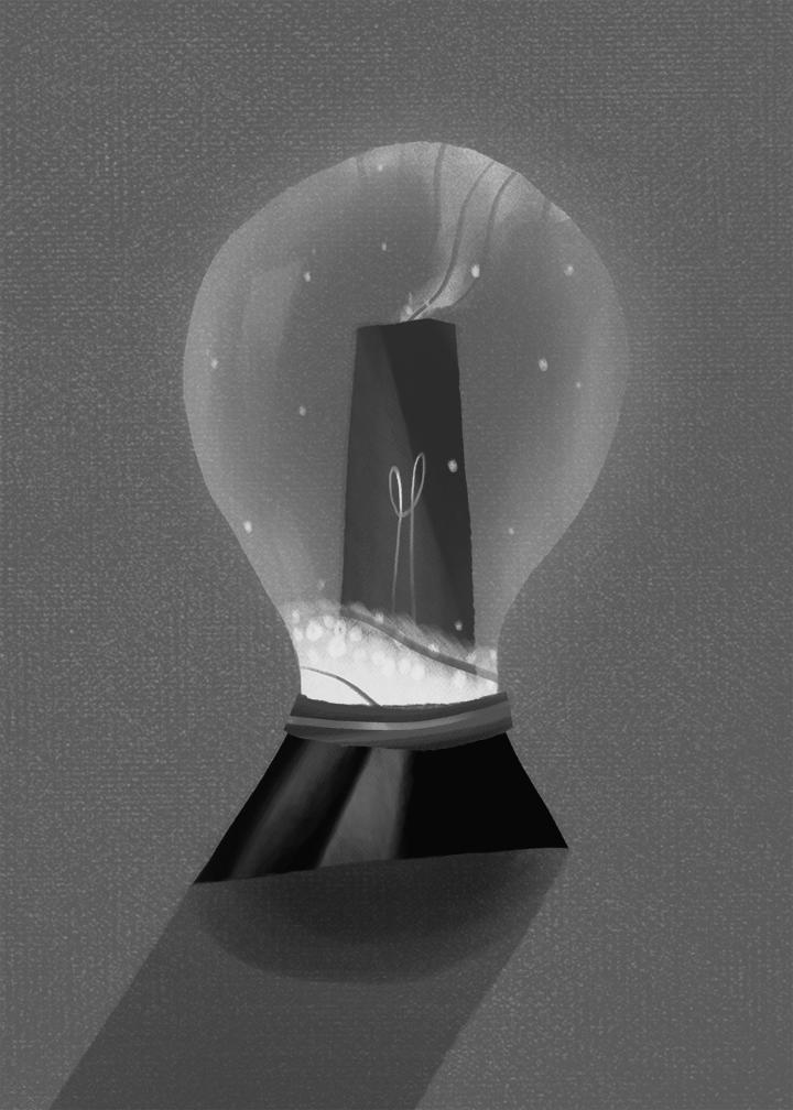 bulb5.jpg