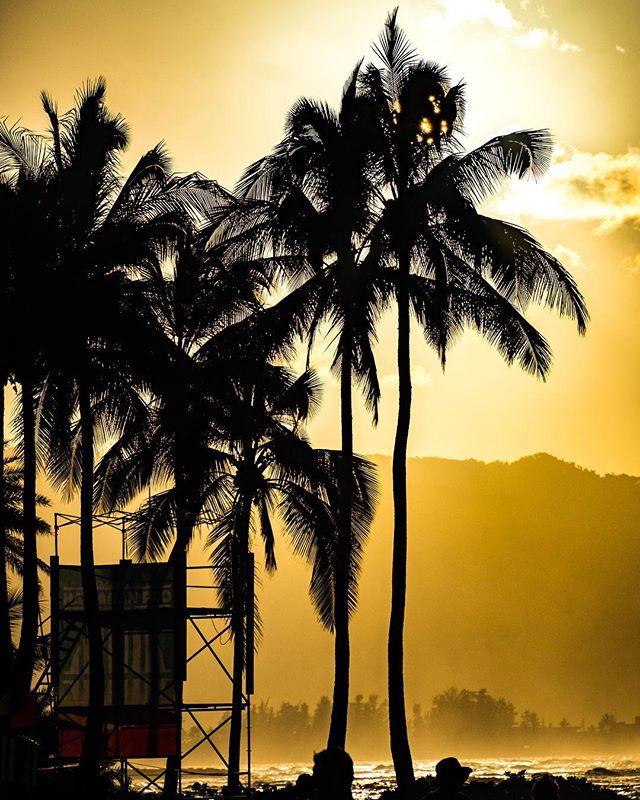 North Shore sunset at the @wsl and @vanstriplecrownsurf Hawaiian Pro. 🤙🏻 ||Haleiwa, HI||