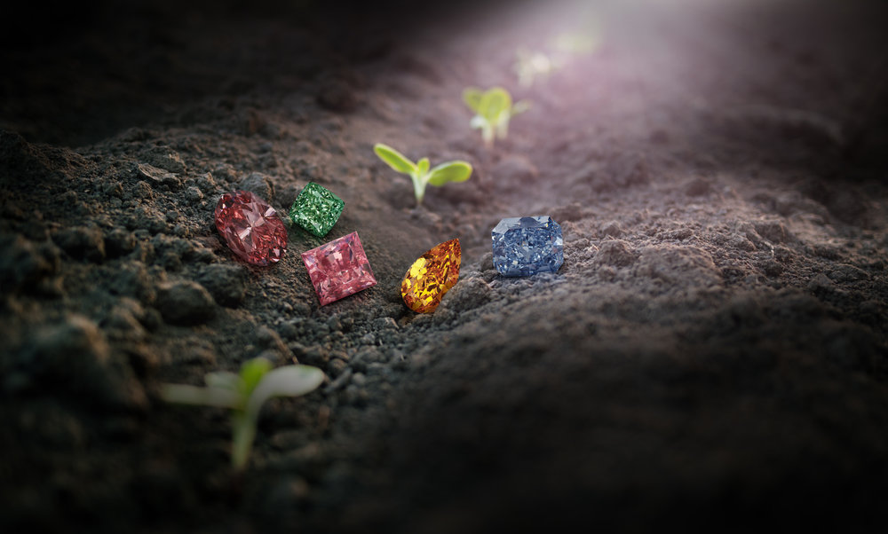 Only the rarest Natural Color Diamonds across the spectrum of colors are used for the Scott West Jewelry collections.
