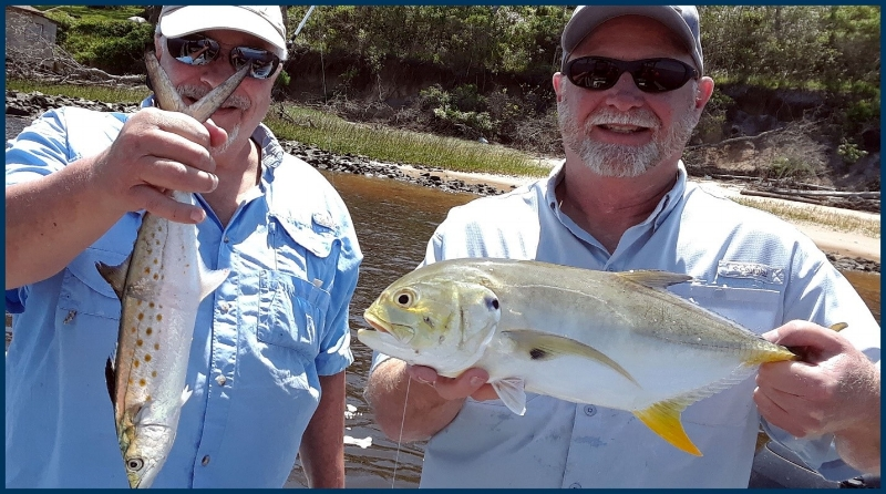 spanish mackeral and jack crevalle in Jacksonville waters