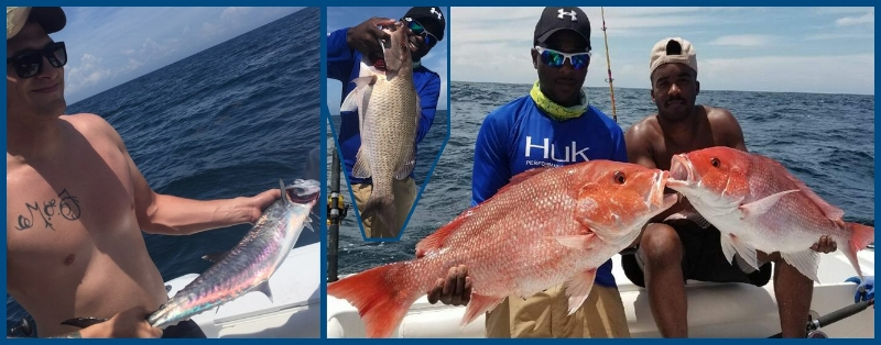 More red snapper, grouper, and other by Cpt Starling