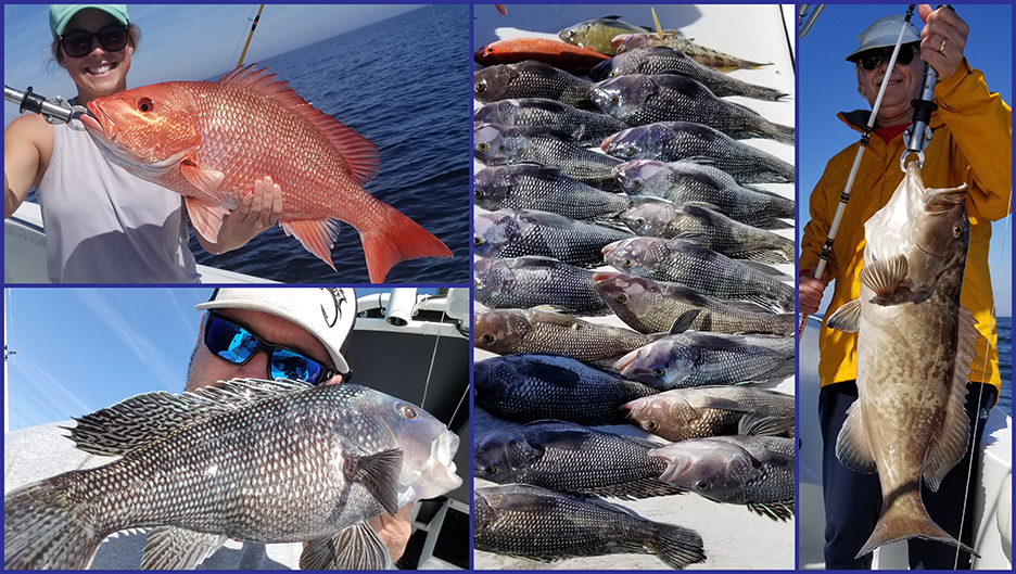 lots of fish on captain Starling's boat in Jacksonville
