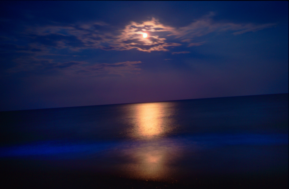Moon on the water, CH 35C raw.jpg