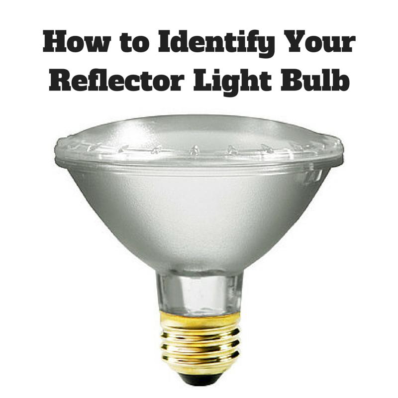 Reflector-Light-Bulb.png