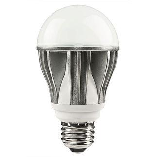 kobi-bulb.jpg
