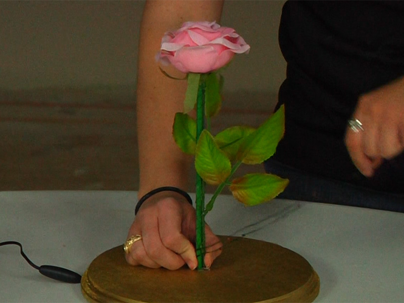 Diy Enchanted Rose From Beauty And The Beast 1000bulbs Blog