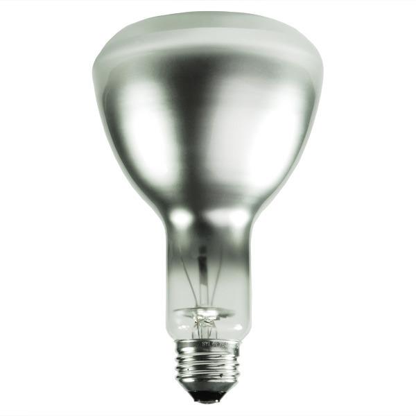 ER30 Bulb