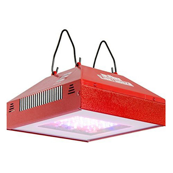 LED grow lamp.jpg